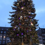 christmas_tree_place_kleber_strasbourg_